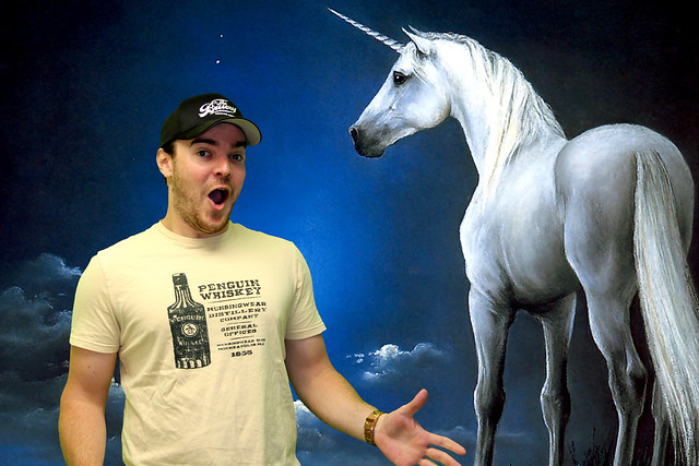 tyler-king-unicorn