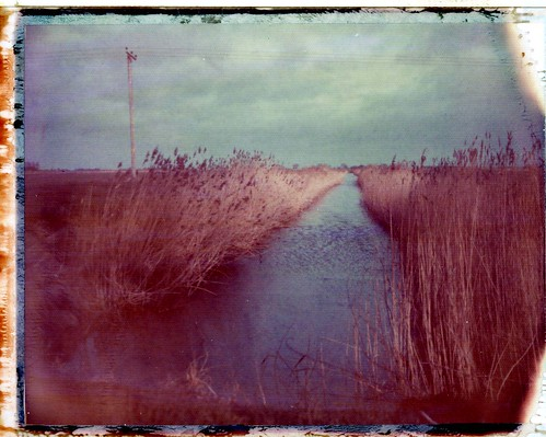 Tick Fen #1 - January 2014