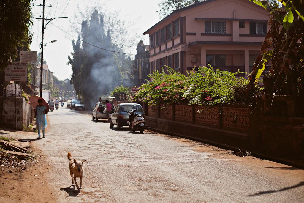 Фото Гоа, Мапуса, Путешествие Индия, города Индии, Фотограф Индия, фосессия на Гоа, Места для фото, интересные места на Гоа