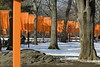 The Gates in Central Park NYC 2.26.05 by interglobalmedia5762