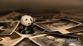 Bad Bad Panda | Projekt 365 | Tag 93