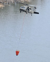 Bambi-Bucket Training
