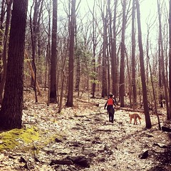 Get outside and go for a #hike. #picoftheday