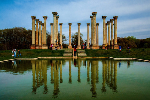 Corinthian Columns in the Garden by Geoff Livingston