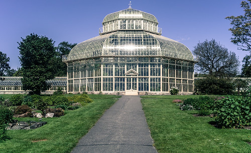 WELL WORTH A VISIT - THE BOTANIC GARDENS IN DUBLIN