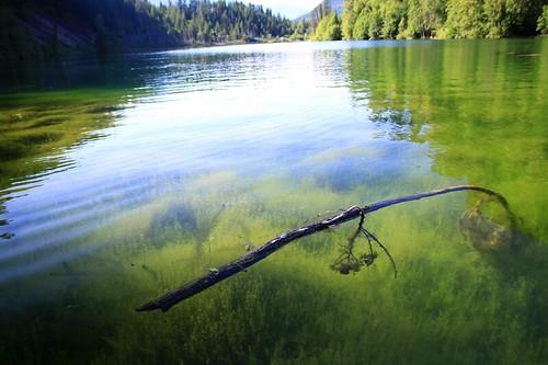water bluelakebostonbar