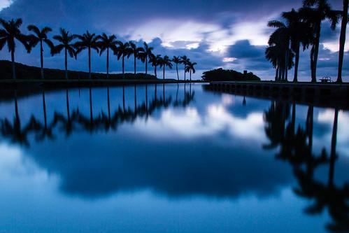 ocean trees lake water clouds sunrise landscape dawn unitedstates florida miami palmtrees southflorida cutler deeringestate palmettobay