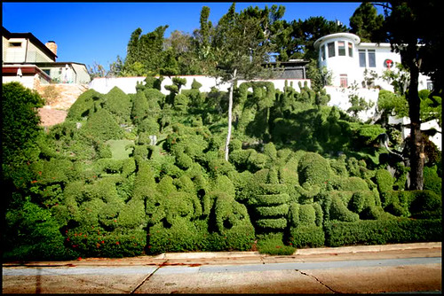 Attractive Topiary Garden