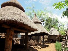 thatching, village, hut, cob, rural area,