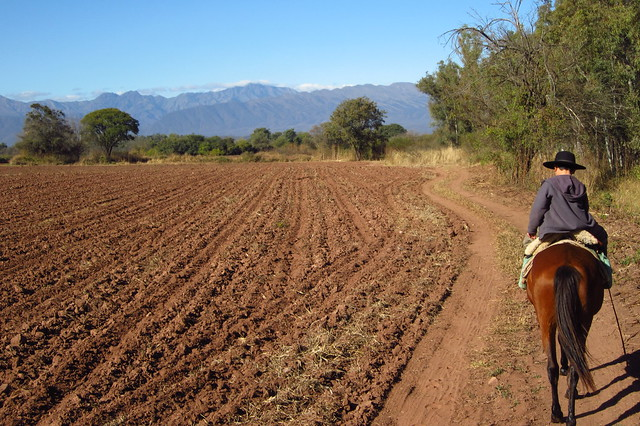 Horseback Riding in Chicoana, Salta