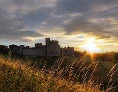 Alnwick Castle Sunset by Matthew Hartley