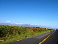 The Hottentots Holland Mountain range