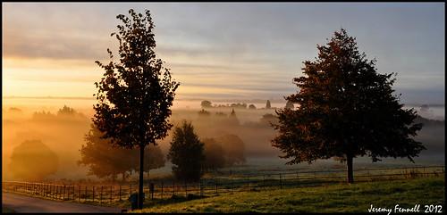 trees mist sunrise fence bristol golden october earlymorning 2012 parkland goldenlight ashtoncourtestate jeremyfennell