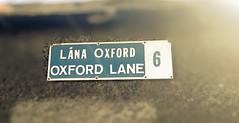 In Oxford Lane
