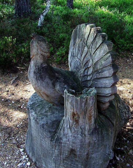 capercaillie sculpture