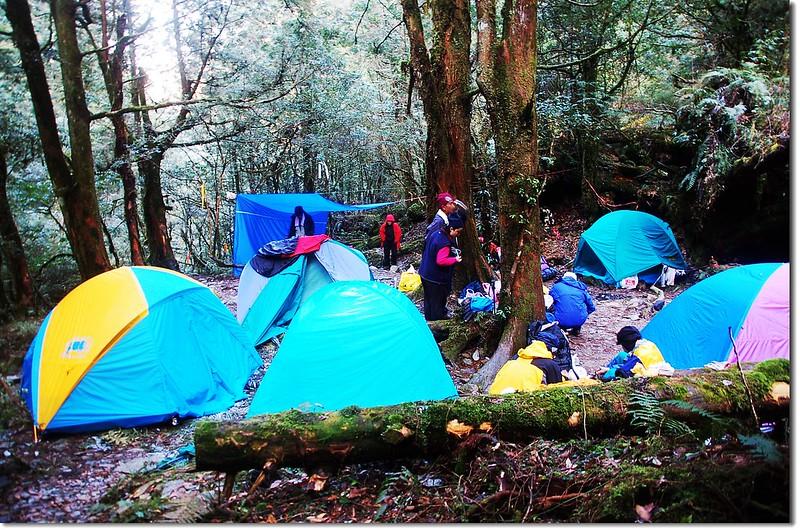 十粒溪營地 1