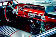 Interior impala
