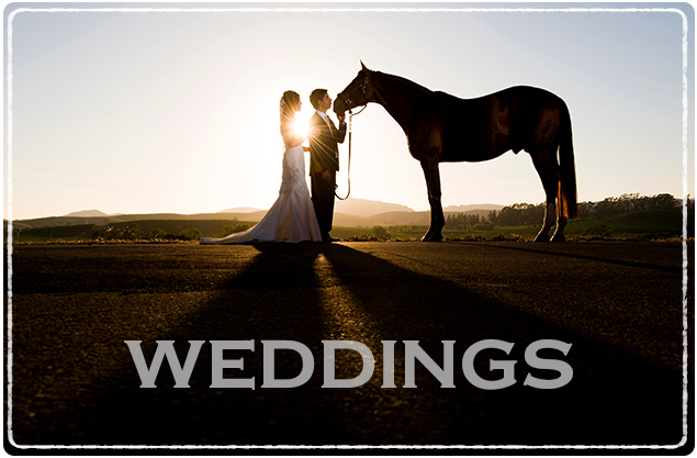 WEDDINGS_02