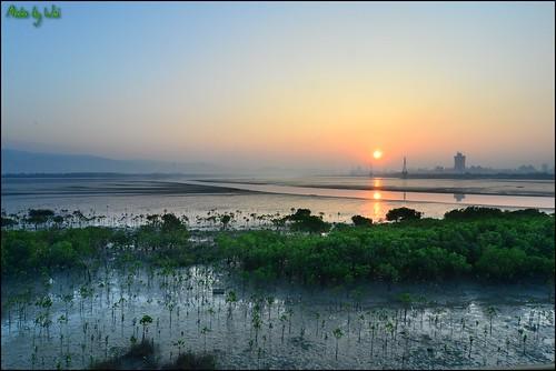 sunset sun sunrise nikon taiwan tokina taipei 台灣 台北 2014 日出 五股 溼地 黑卡 廣角 色溫 水沙蓮 d3100