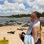 Emily likes the monk seal