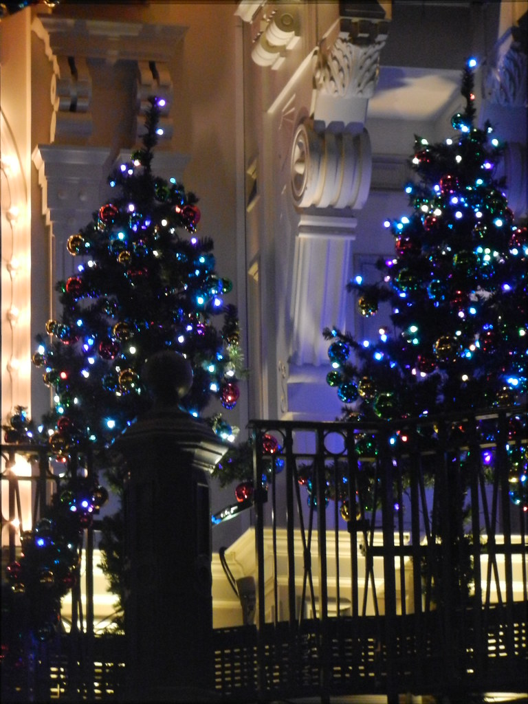 Un séjour pour la Noël à Disneyland et au Royaume d'Arendelle.... - Page 5 13717530783_a4c7eab736_b