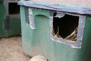 Inside a feral cat pad, CoMo,     Matt Schacht