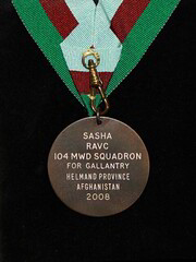 Sasha Dickin medal