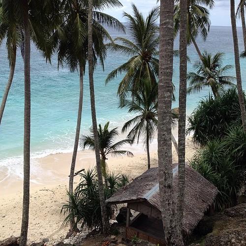 Di pantai sumur tiga, ada sebuah restoran milik seorang bule. Siang tadi gw nyoba pizza dengan toping cumi/gurita/seafood lainnya. Boleh juga #aceh #acehtrip #sumurtiga #beach #pantai #indonesia