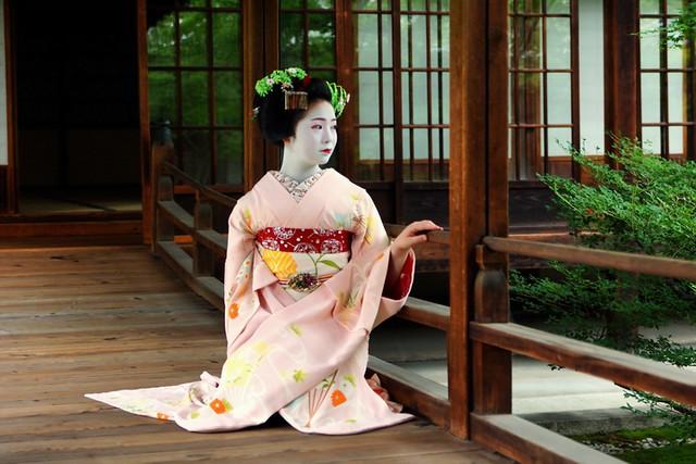 京都の花(ふく朋さん)-22