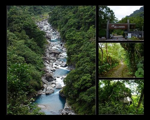 自導式步道、瀑源步道 ~【花蓮瑞穗】富源森林遊樂區