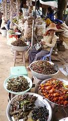 柬埔寨的市場即有大田鱉料理。(圖片來源:楊平世研究團隊)
