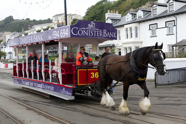 Dougras Bay Horse Tramway