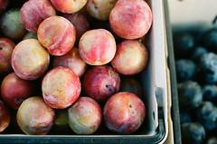 pluot(0.0), plant(0.0), damson(0.0), apple(0.0), peach(1.0), produce(1.0), fruit(1.0), food(1.0), nectarine(1.0),