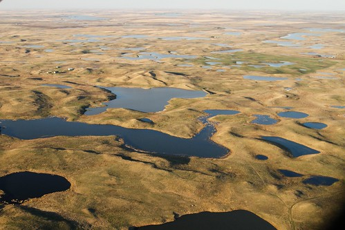 An aerial view of the Prairie Pothole Region, near Wing, North Dakota. Credit: Jim Ringelman, Ducks Unlimited, used with permission.