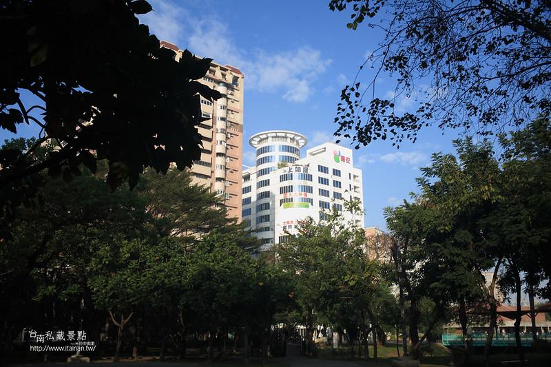 台南私藏景點--巴克禮落羽松 (3)