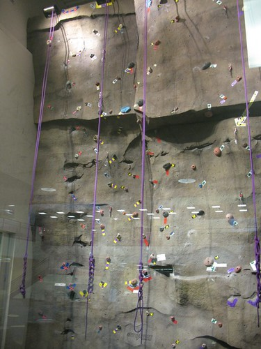 Climbing wall in the Student Union