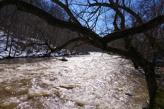 Flowing Brandywine Creek