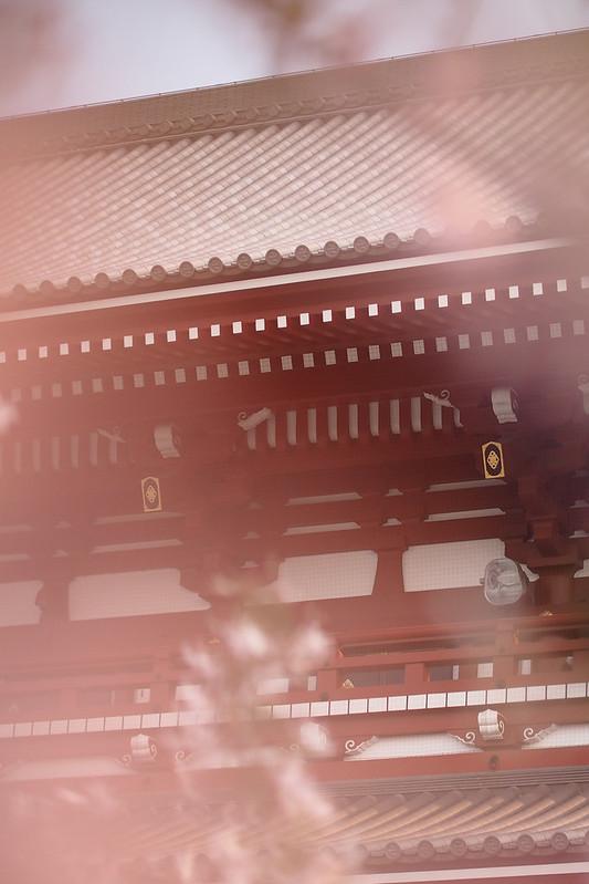 EM101335