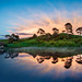 The Pink Morning over Hobbiton by Trey Ratcliff