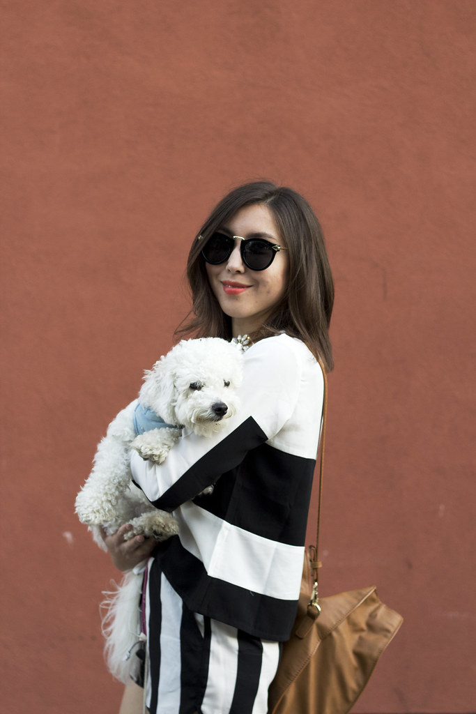 mallory of readytwowear, readytwowear, berkely fashion blog, bichon frisee, cute dog