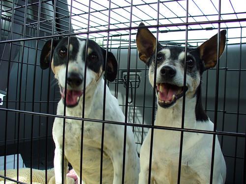 2006-09-30 - PM-Kaylee&JayneMake5-0056 [1024x768]