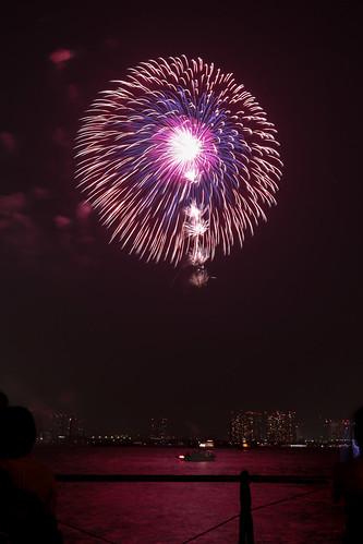 「昇曲付 三重芯 菊先変化 銀乱」 by 新山良洋 東京湾大華火 2013 Tokyo Bay Grand Fireworks