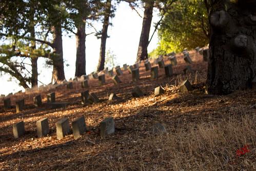 Alhambra Cemetery 21