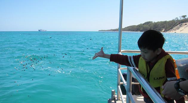 Fish-Feeding-3