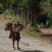 Cargando la leña; entre Corralito y Ocosingo, Chiapas, Mexico por Lon&Queta