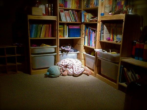 Library sleeper