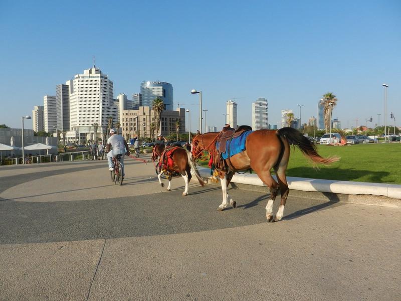Тель Авив Набережная Израиль