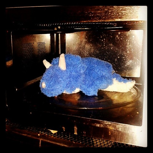 ... That feeling of guilt you get when you microwave a cuddly toy... by PhylB