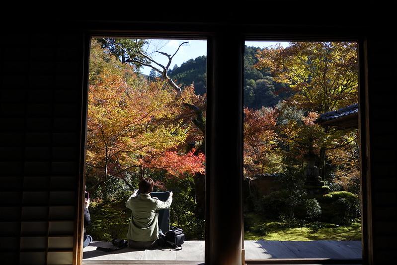 京都 2013.11.13