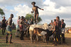 The bridegroom jumps over bulls at the day of his wedding